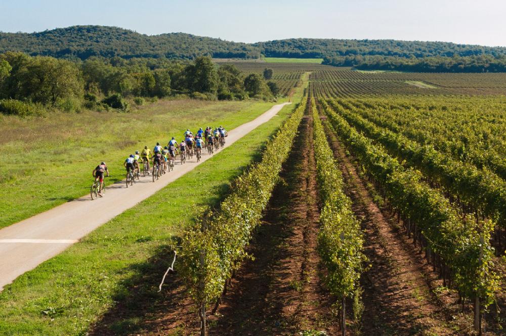 bike-istra-fahrrad-fahren-mtb-rennen-race-istrien-pool-villa-exclusive-living-tar-kroatien-urlaub